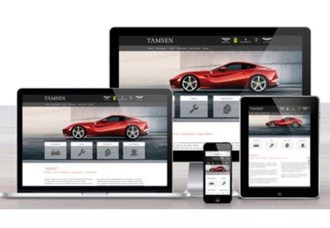 Fahrzeugverwaltung Software - Darstellung auf Screens
